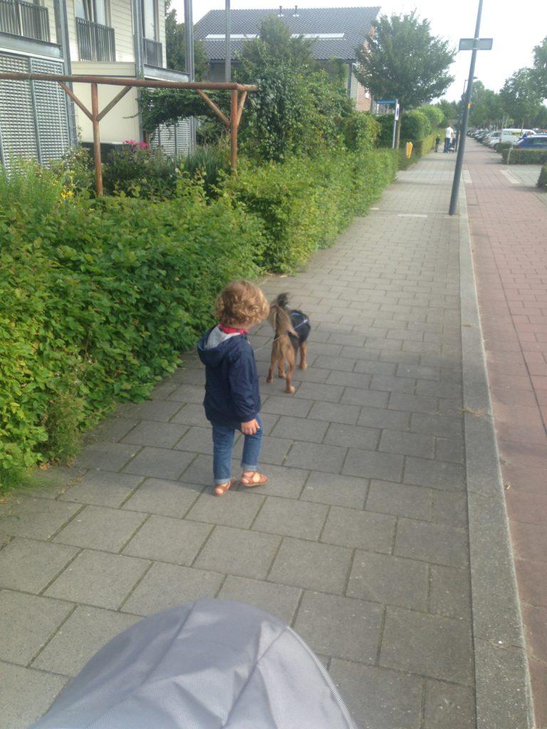 Vrienden kwamen langs en we maakten een wandeling langs de plas. Sem wilde Xavi wel vasthouden.